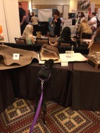 Small black dog investigates cat furniture at pet trade show